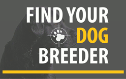 Find Your Breeder