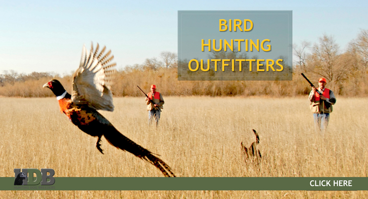 Bird Hunting Outfitters