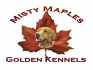 Misty Maples Golden Kennels logo